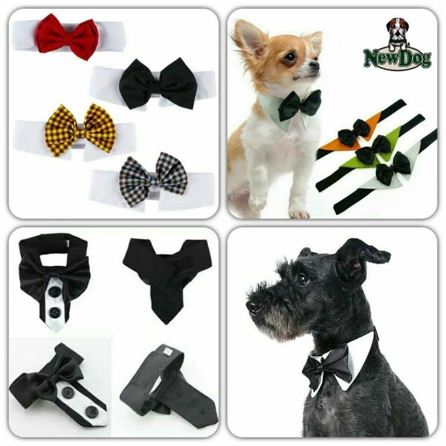 Papillon e Cravatta per Cane e Gatto