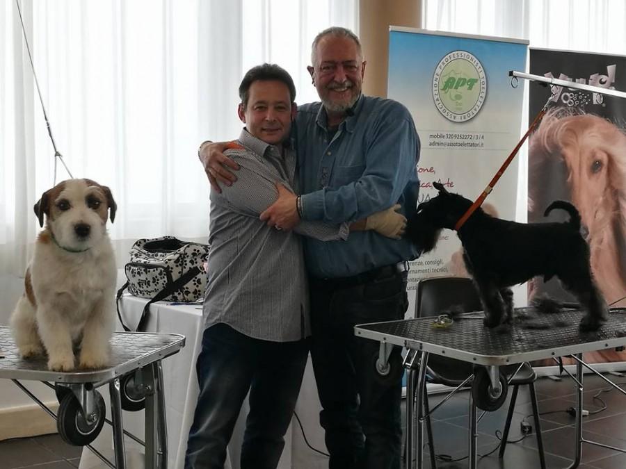 Dimostrazione di Stripping su Jack Russell Terrier e Schnauzer Nano