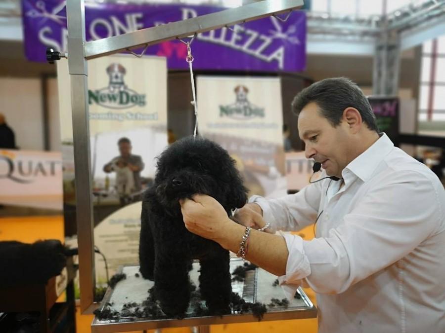 Quattrozampeinfiera Napoli 2019